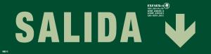 EVACUACIONB -SEGURIDAD CATALOGO JULIO 19 clase B_R11 SALIDA FLECHA ABAJO